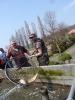 Výlov Čabárna - 21.4.2013_149